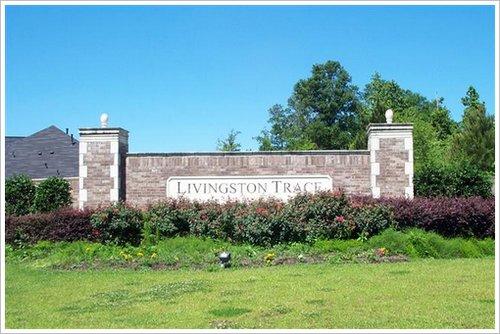 Livington Trace Subdivision Denham Springs LA 70726 DR Horton Community (7)