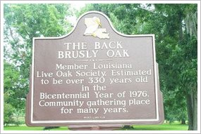 Back-Brusly-Louisiana-Sign